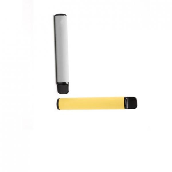 Wholesale Price 300puffs 10 Flavors Disposable Electronic Cigarette Ezzy Oval